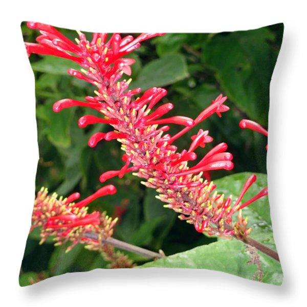 Red Fingerlings Throw Pillow by Robert Meyers-Lussier