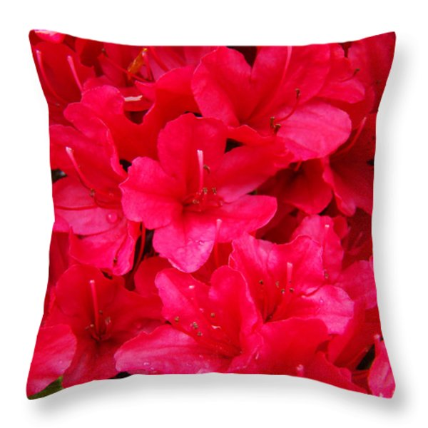 Red Floral art prints Rhododendron Flowers Rhodies Throw Pillow by Baslee Troutman Fine Art Prints