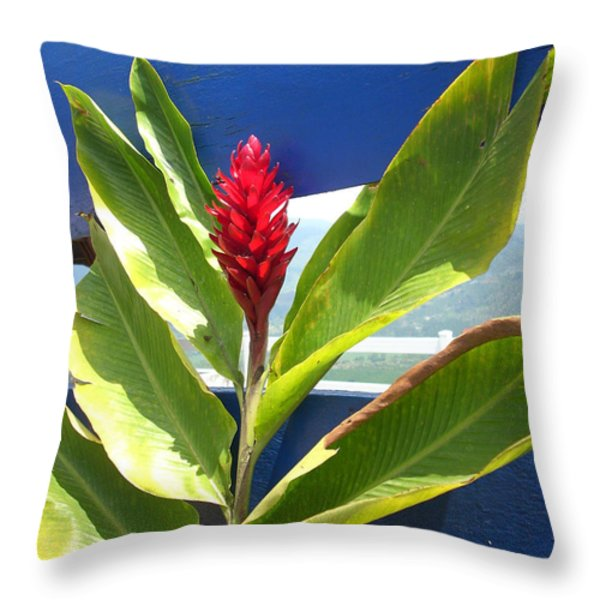Red Ginger Throw Pillow by Randi Shenkman