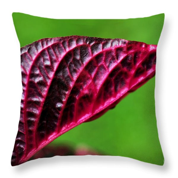 Red Leaf Throw Pillow by Kaye Menner