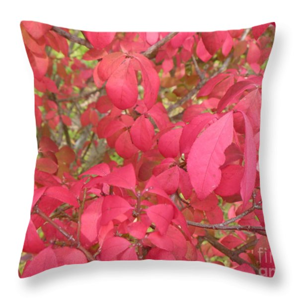 Red Leaves IIi Throw Pillow by Alys Caviness-Gober