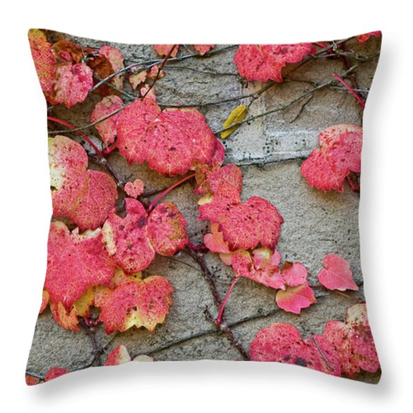 Red Leaves Throw Pillow by Scott Norris