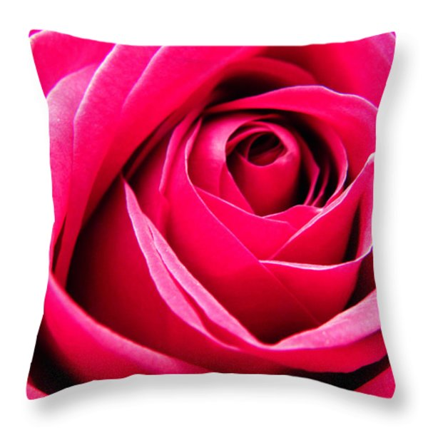 Red Rose Macro Throw Pillow by Sandi OReilly