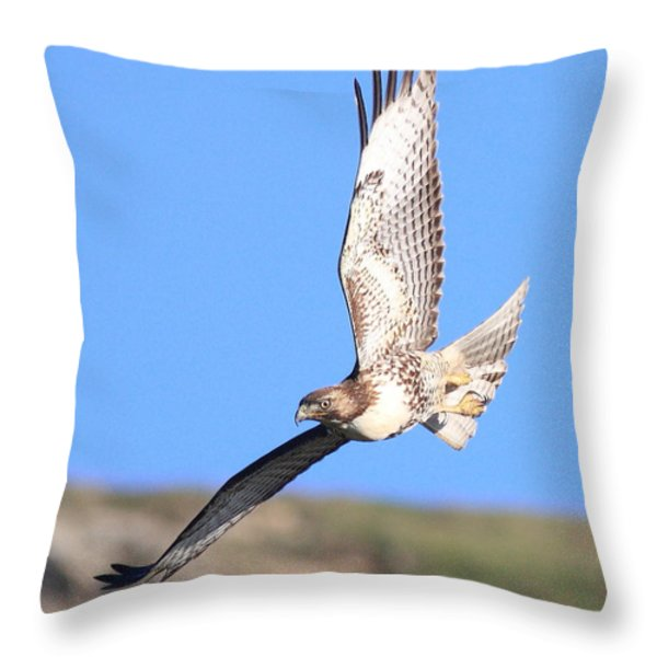 Red-tailed Hawk . 40d10968 Throw Pillow by Wingsdomain Art and Photography