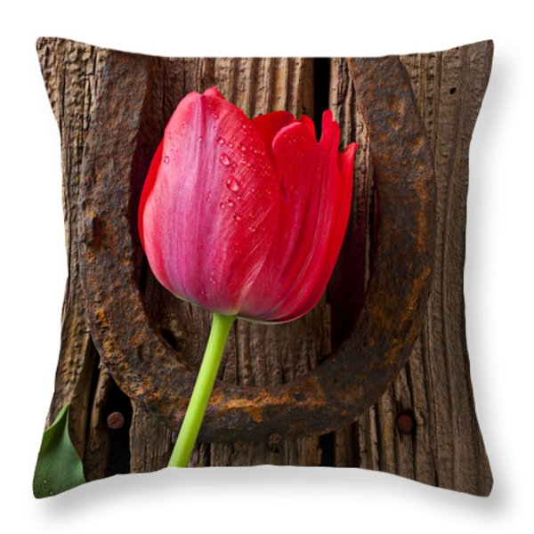Red Tulip And Horseshoe  Throw Pillow by Garry Gay