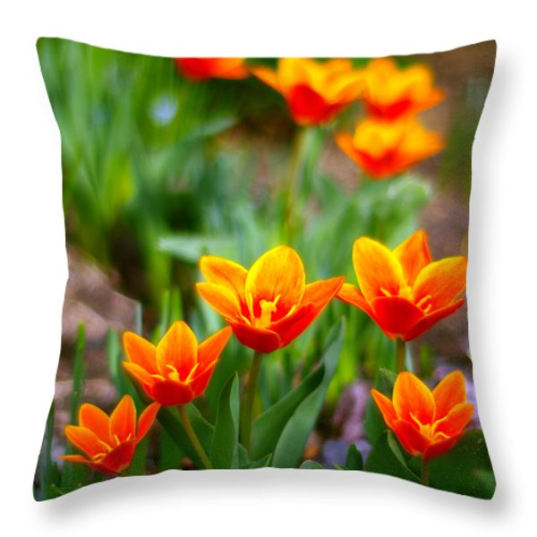 Red Tulips Throw Pillow by Paul Ge