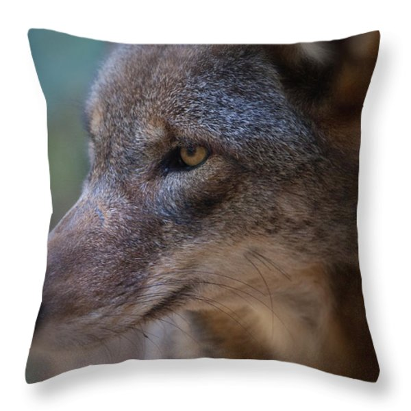 Red Wolf Stare Throw Pillow by Karol Livote