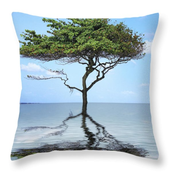 Reflecting Throw Pillow by Cheryl Young