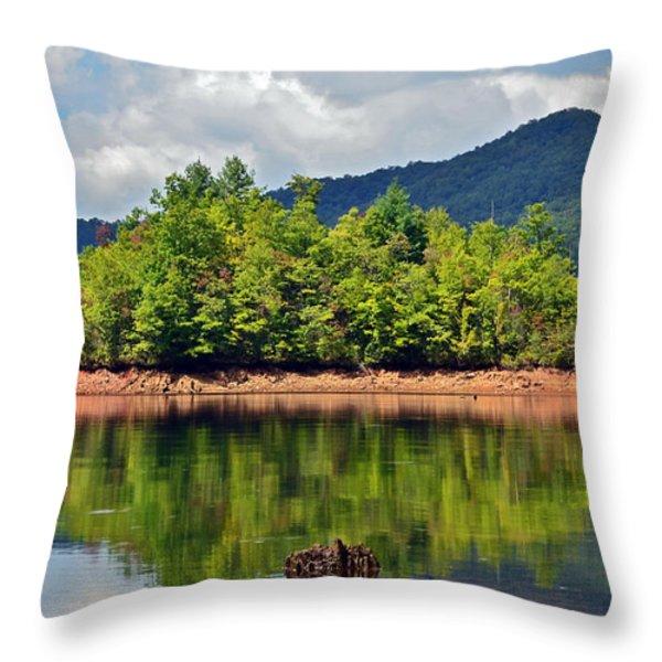 Reflecting Throw Pillow by Susan Leggett