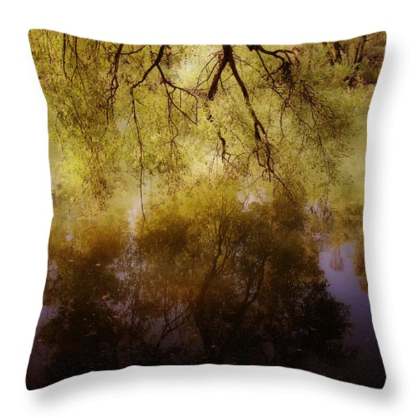 Reflection Throw Pillow by Joana Kruse