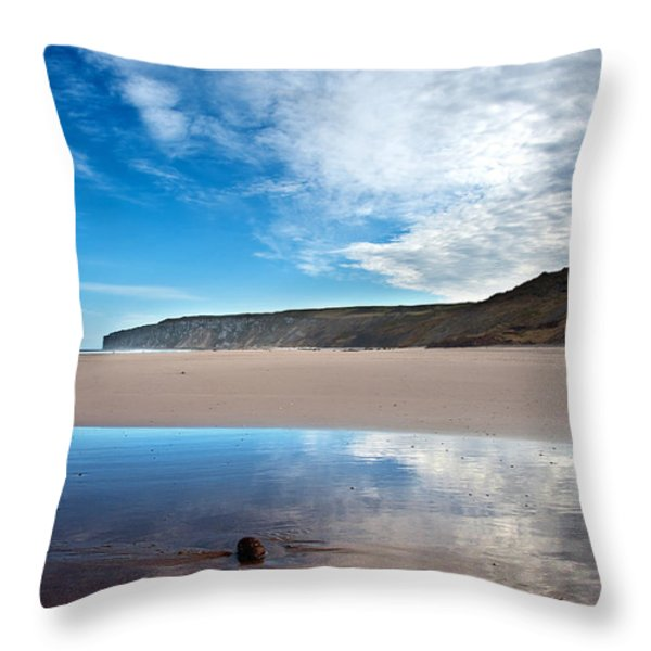 Reflection Throw Pillow by Svetlana Sewell