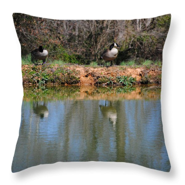 Reflections Throw Pillow by Jai Johnson