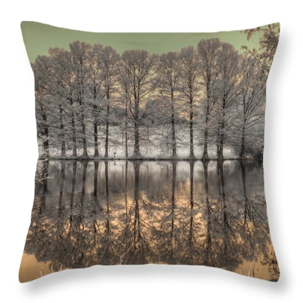 Reflections Throw Pillow by Jane Linders