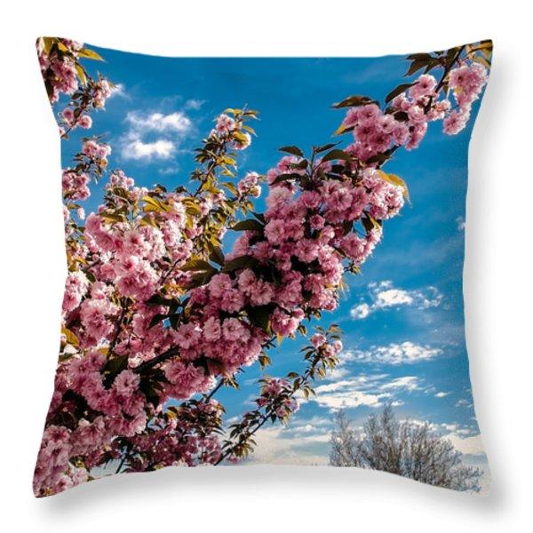 Refreshing Throw Pillow by Robert Bales