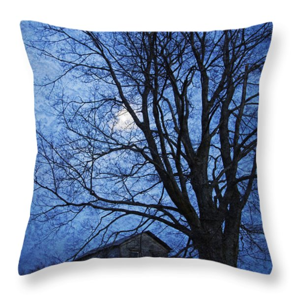 Remember When - This Old House Throw Pillow by John Stephens