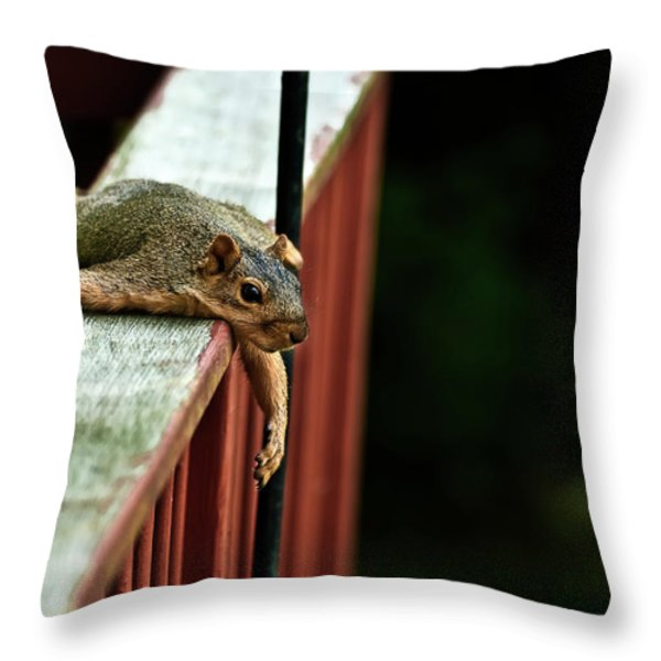 Resting Squirrel Throw Pillow by  onyonet  photo studios