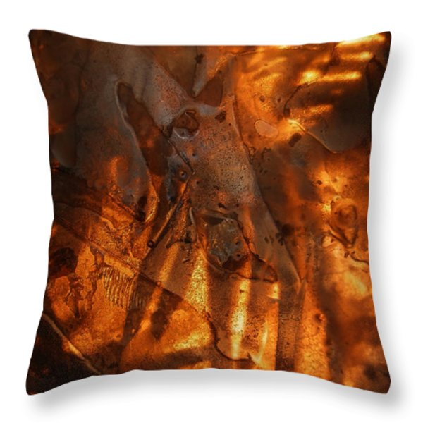 Revelation Throw Pillow by Sami Tiainen
