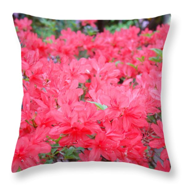 Rhodies art prints Pink Rhododendrons Floral Throw Pillow by Baslee Troutman