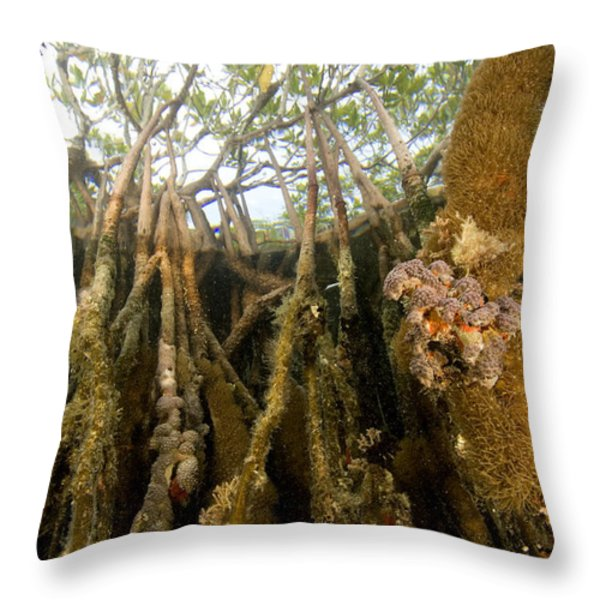 Rich Invertebrate Life Growing Throw Pillow by Tim Laman