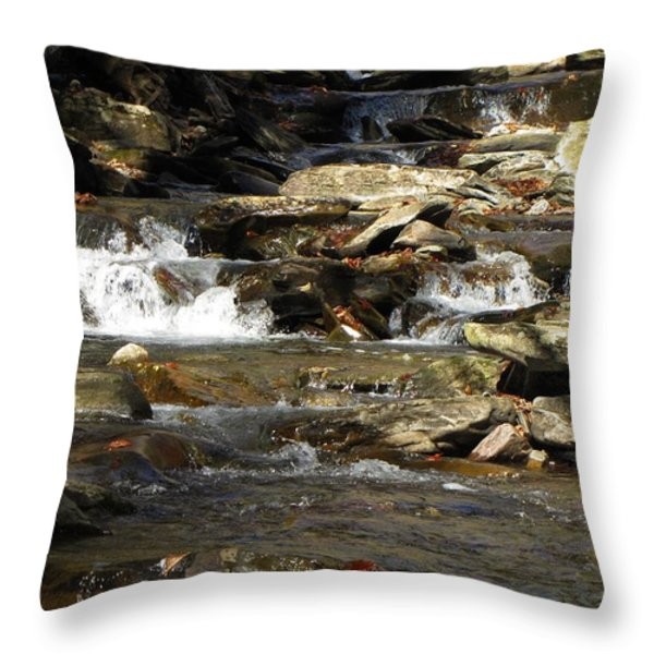 Ricketts Glen Waterfall 3975 Throw Pillow by David Dehner