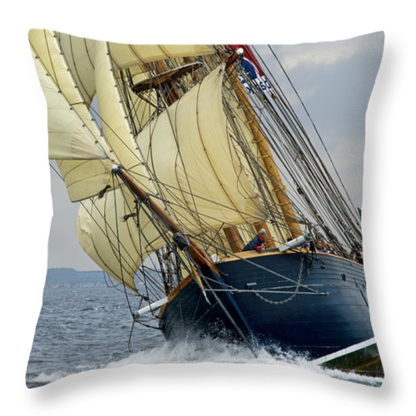 Riding the Wind Throw Pillow by Robert Lacy