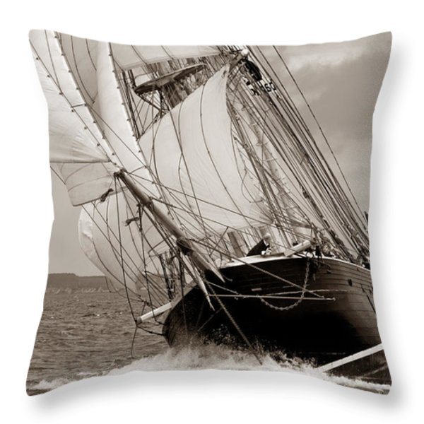 Riding the Wind -sepia Throw Pillow by Robert Lacy