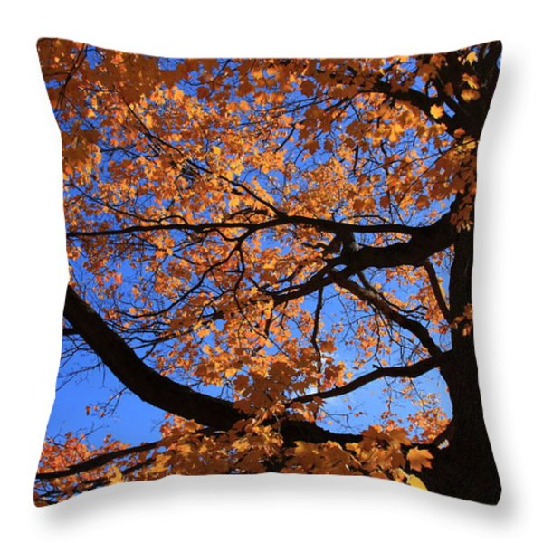 Right Place Right Time Throw Pillow by Lyle Hatch