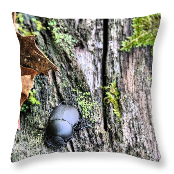 Ringo Starr Throw Pillow by JC Findley