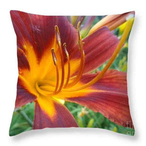 Ripe Blood Orange Throw Pillow by Trish Hale