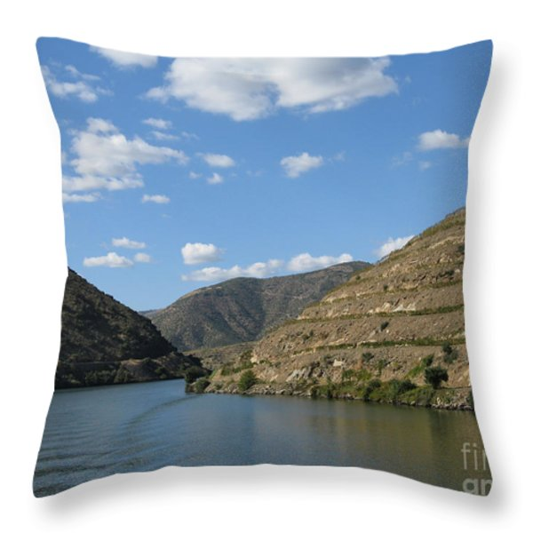 Ripples On The Water Throw Pillow by Arlene Carmel