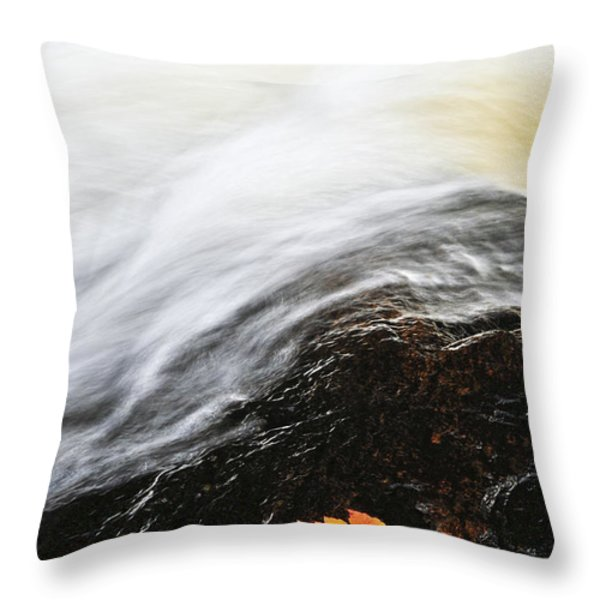 River in fall Throw Pillow by Elena Elisseeva
