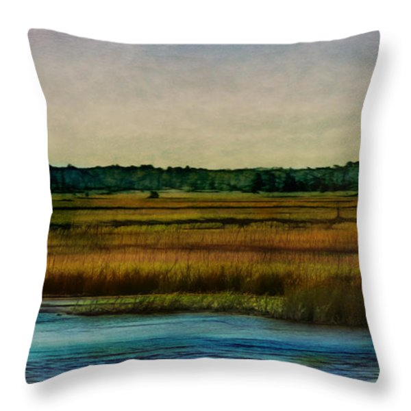 River Of Grass Throw Pillow by Judi Bagwell