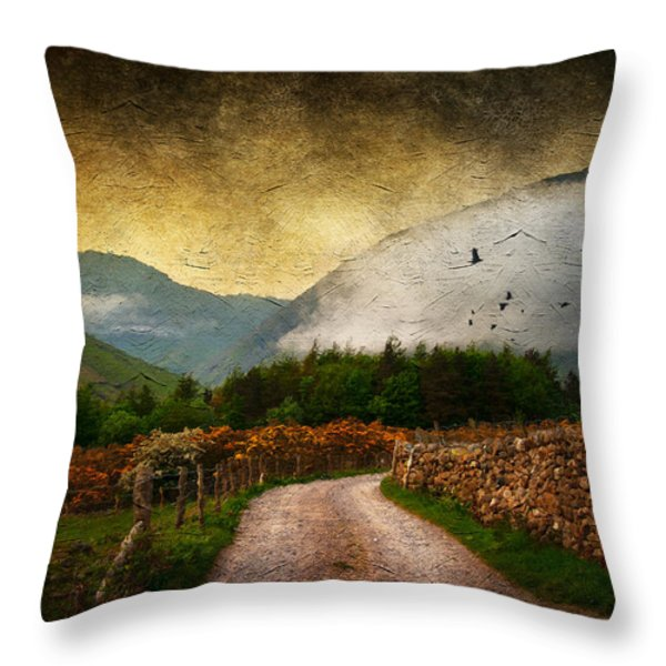 Road by the Lake Throw Pillow by Svetlana Sewell