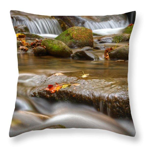 Roaring Fork Stream Great Smoky Mountains Throw Pillow by Steve Gadomski