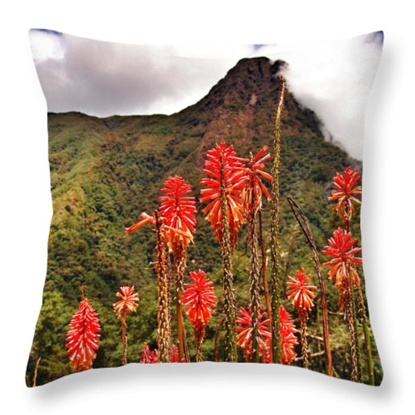 Rocket's Red Glare Throw Pillow by Skip Hunt