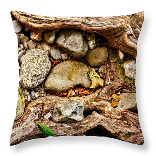 Rocks And Roots Throw Pillow by Christopher Holmes