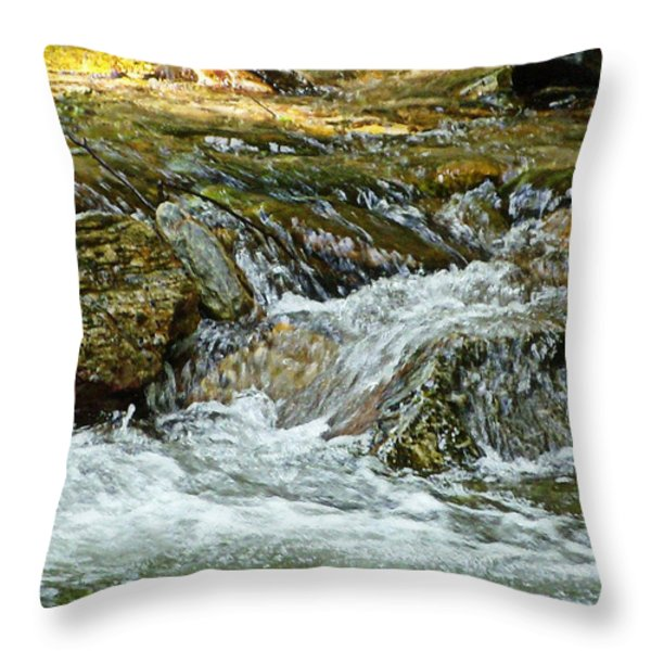Rocky River Throw Pillow by Lydia Holly