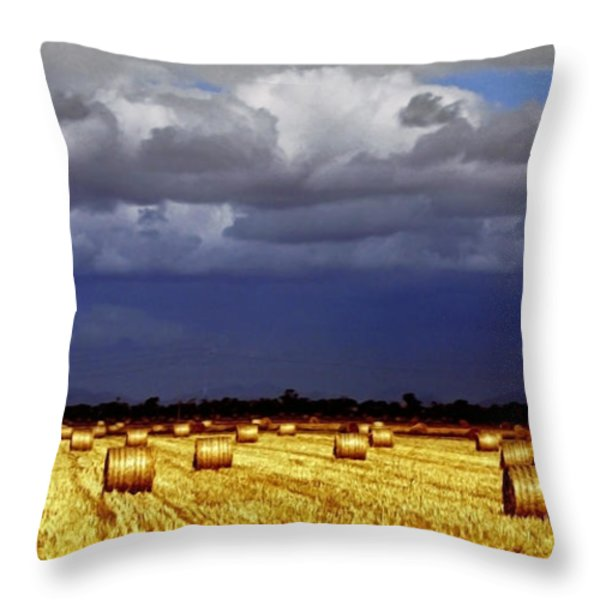 Rolling On Throw Pillow by Holly Kempe
