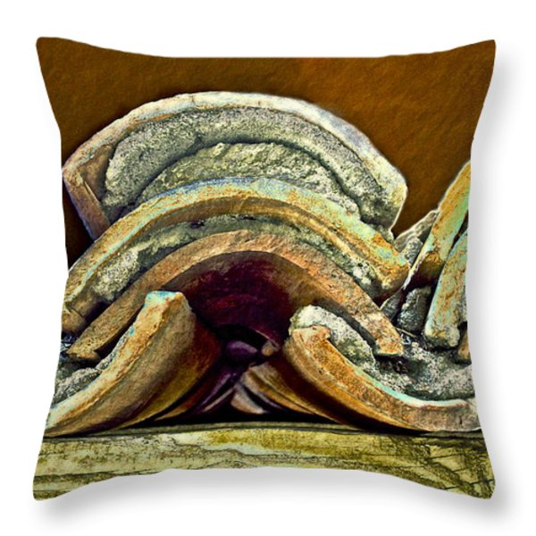 Roof Tiles Throw Pillow by Gwyn Newcombe