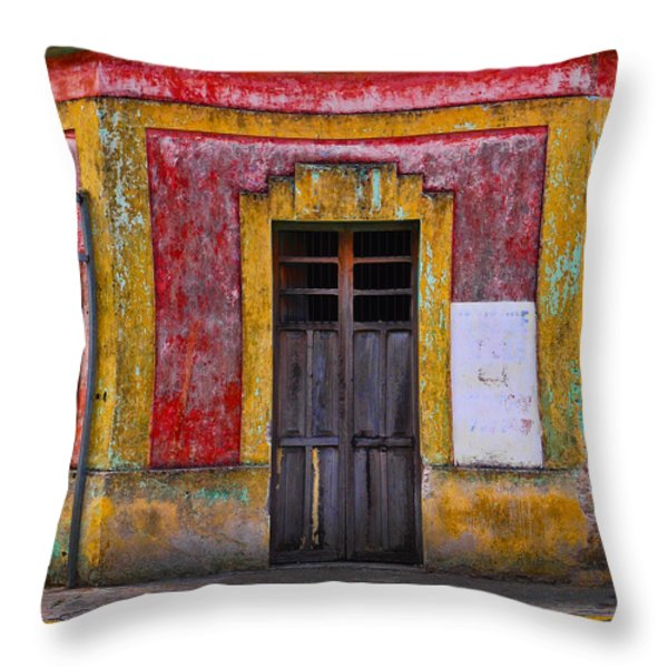 Rosie Throw Pillow by Skip Hunt