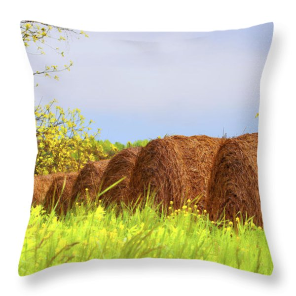Round Bales Throw Pillow by Tom Mc Nemar