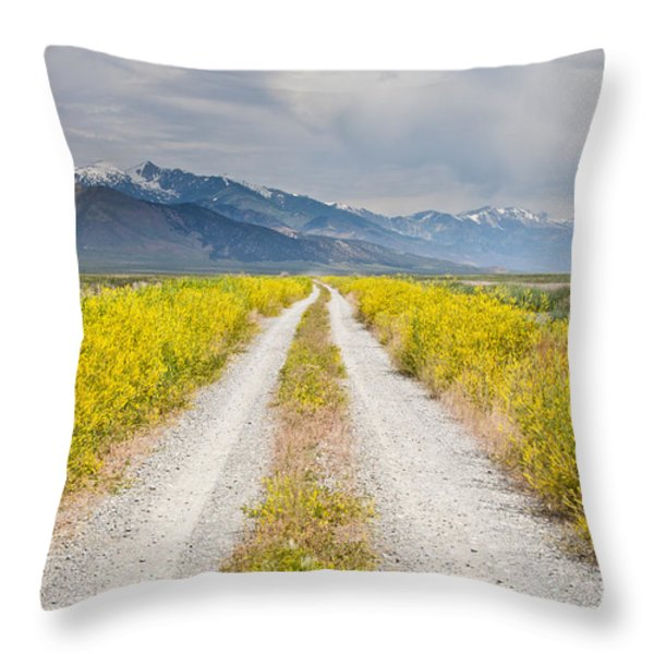 Ruby Mountains Wildflower Road Throw Pillow by Sheri Van Wert