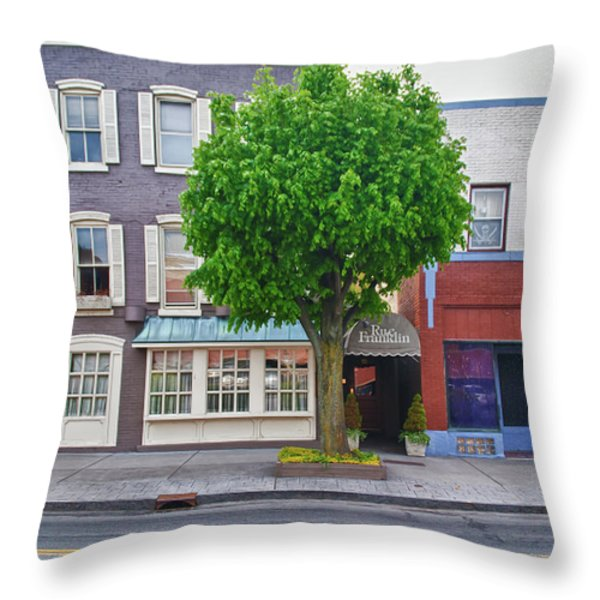 Rue Franklin Throw Pillow by Guy Whiteley