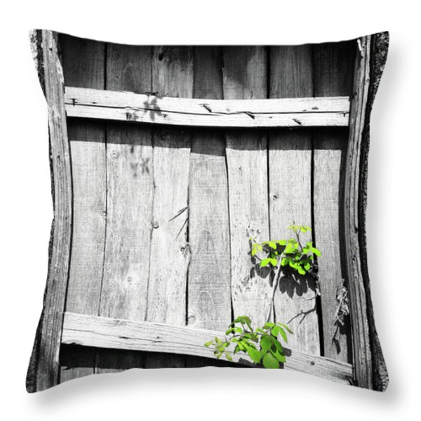 Ruins Throw Pillow by Gaspar Avila