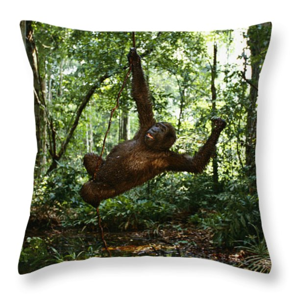Running, Chasing And Swinging On Vines Throw Pillow by Michael Nichols