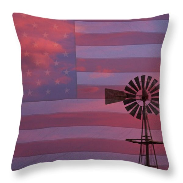 Rural America Throw Pillow by James BO  Insogna