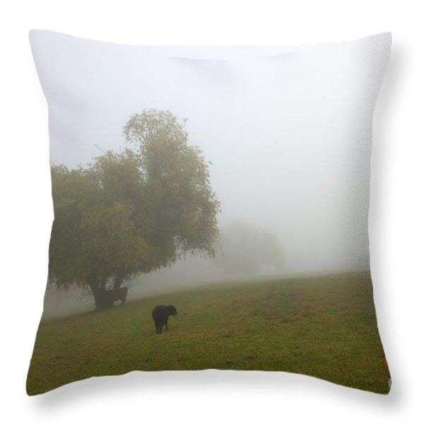 Rural Fog Throw Pillow by Mike  Dawson