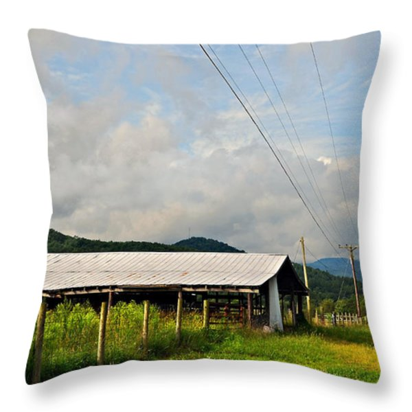 Rural Highways And Biways Throw Pillow by Susan Leggett