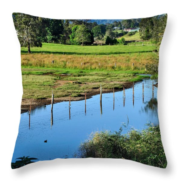 Rural Landscape After Rain Throw Pillow by Kaye Menner
