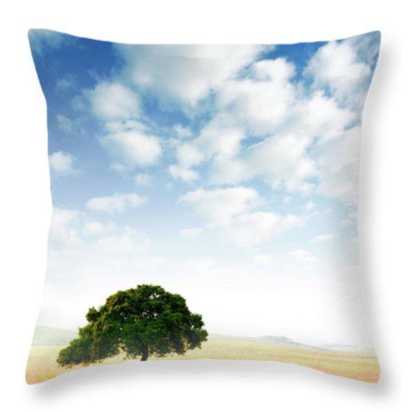 Rural Scene Throw Pillow by Carlos Caetano